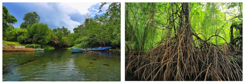 Pemandian Air Panas Wisata Mangrove Gamtala